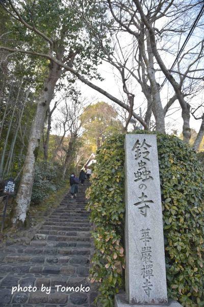 日帰り京都♪(鈴虫寺)_c0345348_22015666.jpg