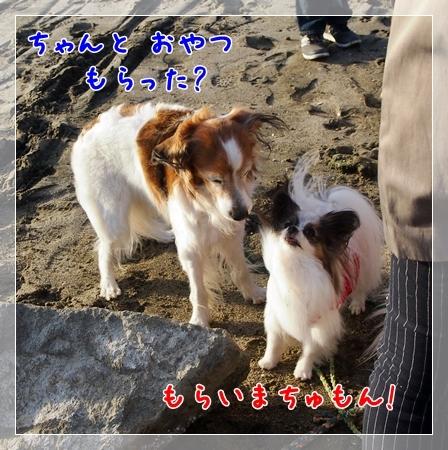 d0013149_23364783.jpg