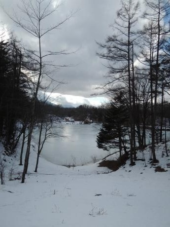 照月湖のワカサギ釣り_c0341450_16375238.jpg