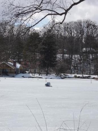 照月湖のワカサギ釣り_c0341450_16375969.jpg