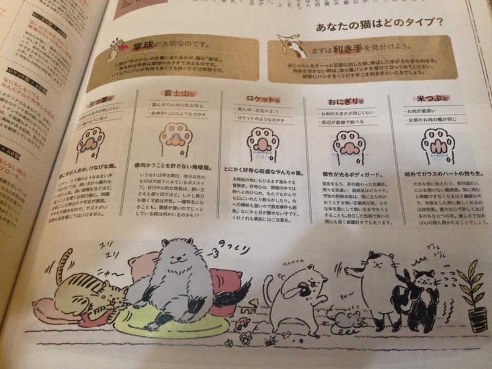 ☆猫の肉球占い☆(=^ェ^=)_b0195783_10275316.jpg