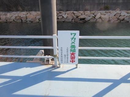 岬高校支援活動・・・    by   (ナベサダ)_f0053885_20092508.jpg