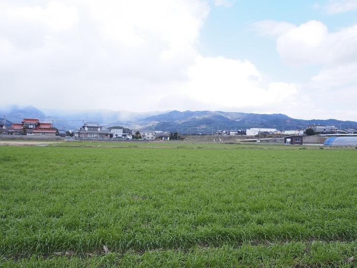 吉野ヶ里の田園_a0149488_1840055.jpg