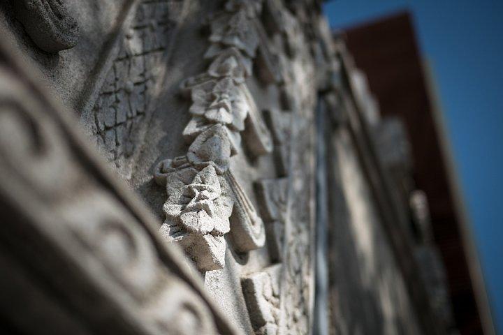 バリの廃墟に生息する光蜥蜴_d0353489_22222861.jpg