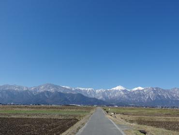 春への道_a0014840_23572571.jpg