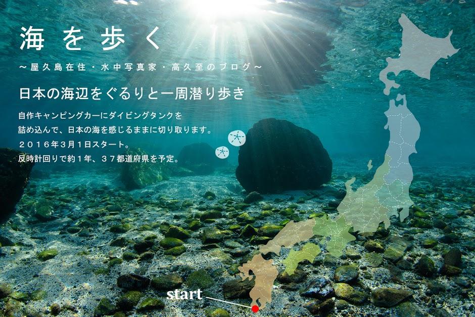 日本の海辺の海辺をぐるり一周潜り歩き_b0186442_1471466.jpg