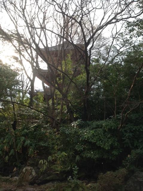 大山崎山荘美術館『三國荘展』_b0153663_13300114.jpg
