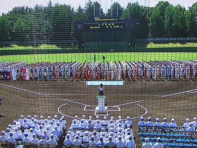 大会歌独唱! 2015夏の高校野球栃木県大会 _b0187479_21364029.jpg