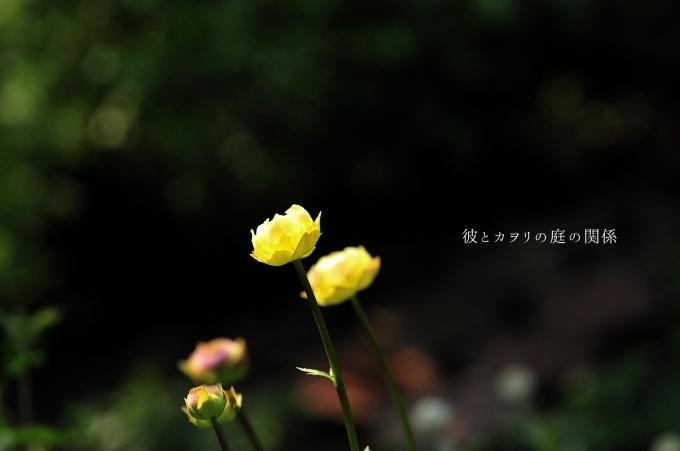 c0365716_19542603.jpg