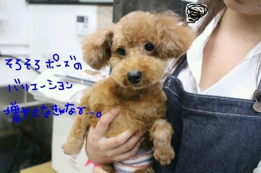 cafe♪_b0130018_23344284.jpg