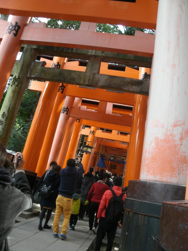 そうだ、京都へ行こう 2_a0054041_1791836.jpg