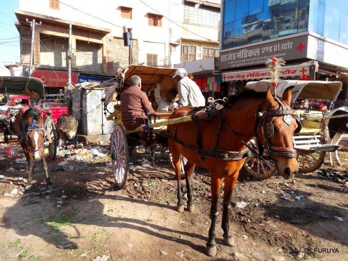 インド・ラジャスタンの旅 8  サダル・バザール_a0092659_10465541.jpg