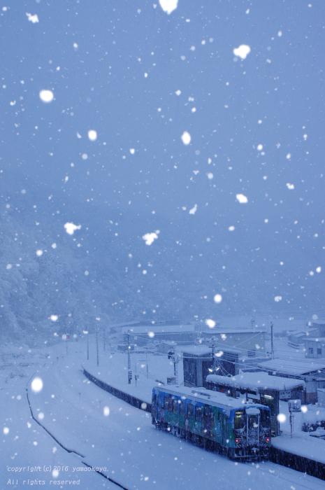 白い雪は降り続く_d0309612_048422.jpg