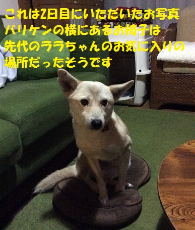 f0121712_22143431.jpg