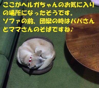 f0121712_22561030.jpg