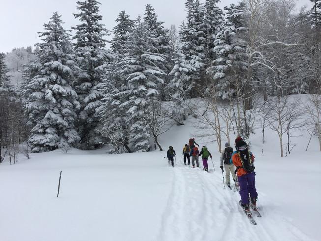"""2016年2月 『パウダースノーの聖地、北海道』 February 2016 \""""Sanctuary of Powder Snow in the World\""""_c0219616_2062469.jpg"""
