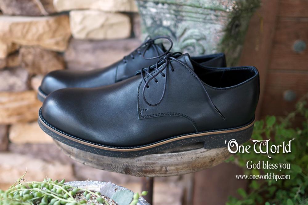 防水レザーな革靴_a0155932_13310539.jpg