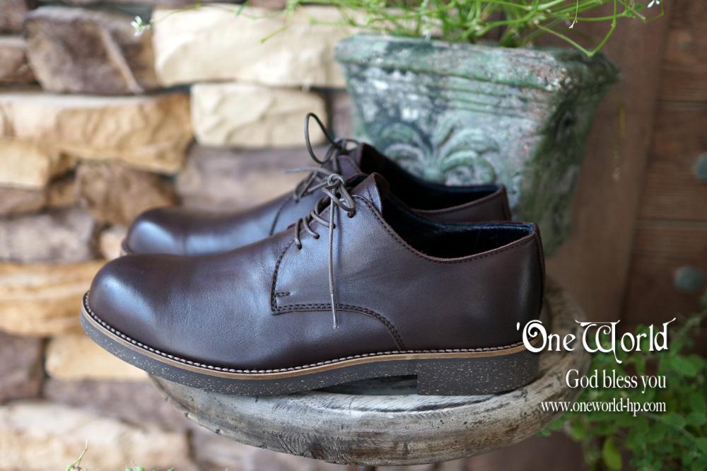防水レザーな革靴_a0155932_13385728.jpg