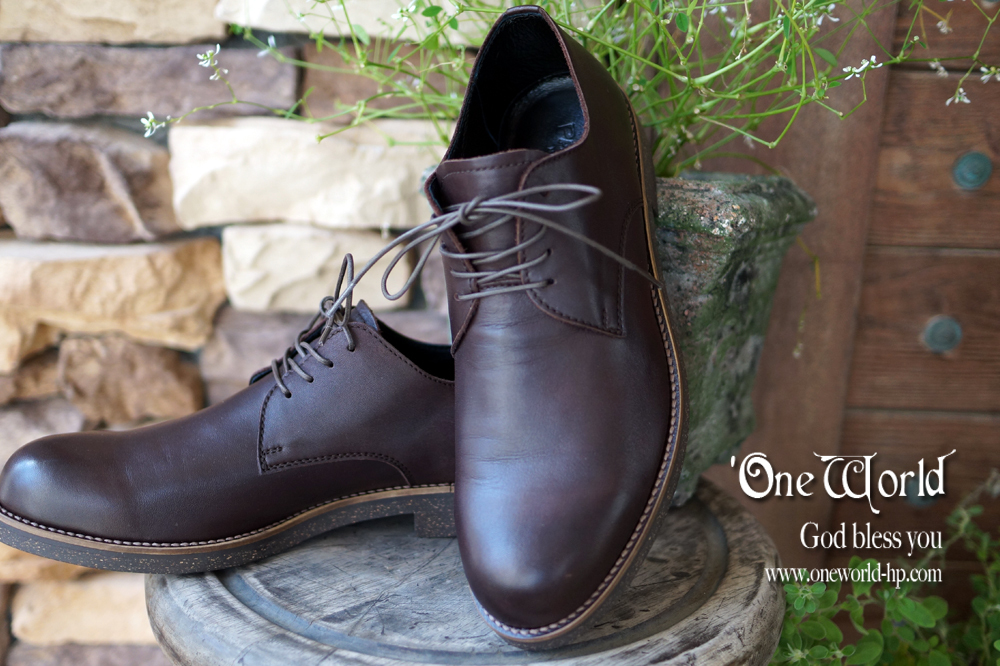 防水レザーな革靴_a0155932_13391290.jpg