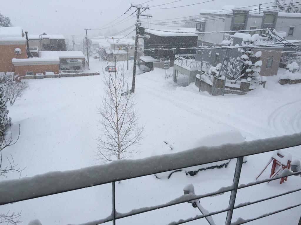 大雪_f0209434_14122412.jpg