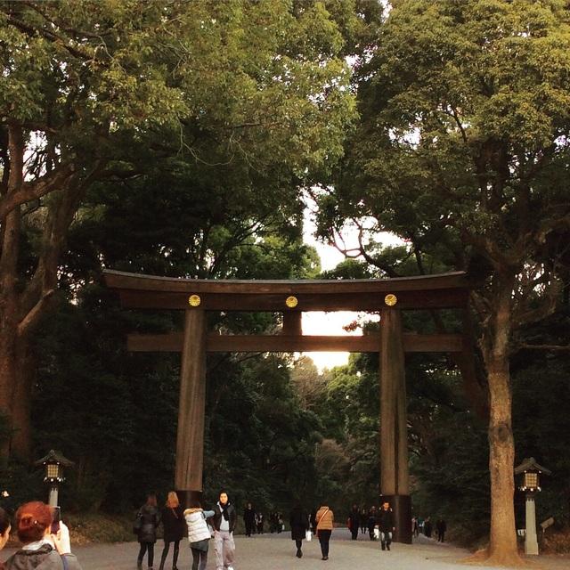 東京出張アルバム。_b0125443_1011433.jpg
