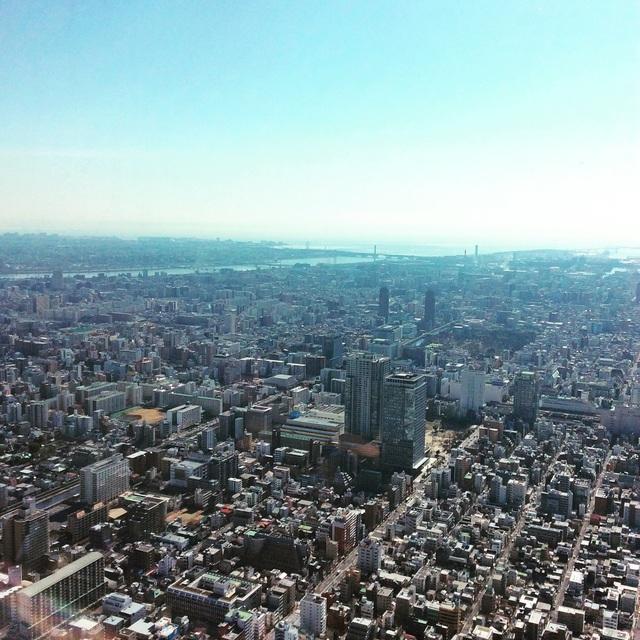 東京出張アルバム。_b0125443_9592245.jpg