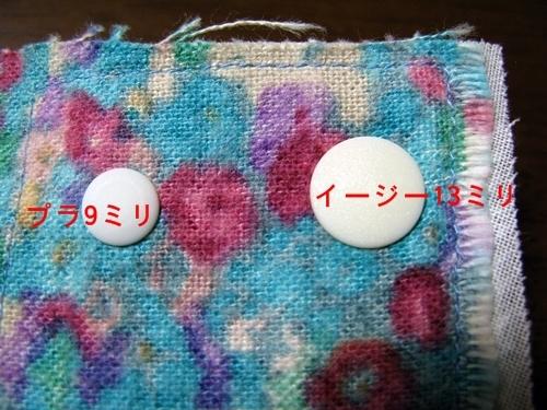 プラスナップ イージースナップ 使用レポ_f0129726_21545594.jpg