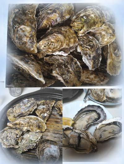 今夜は牡蠣パーティーでした_c0036138_21160327.jpg
