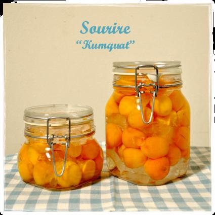 Kumquat ~金柑~_c0350941_22281432.png