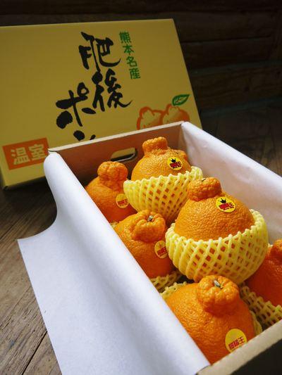 """原木しいたけ 最も美味い""""春子""""です!生しいたけも乾燥しいたけも大好評発売中!!_a0254656_18562540.jpg"""