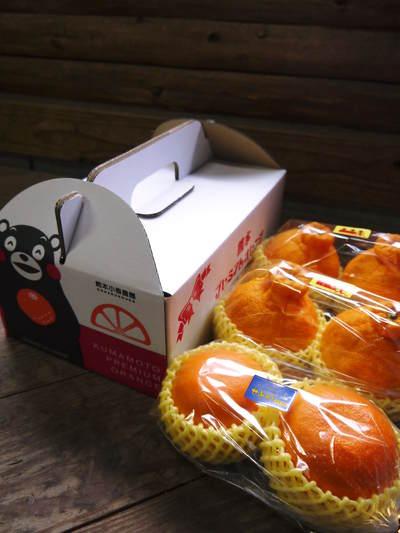 """原木しいたけ 最も美味い""""春子""""です!生しいたけも乾燥しいたけも大好評発売中!!_a0254656_18591410.jpg"""