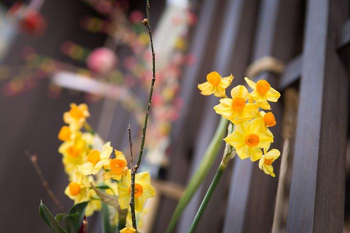 春を告げる「中馬のおひなさん」_d0353489_20223956.jpg