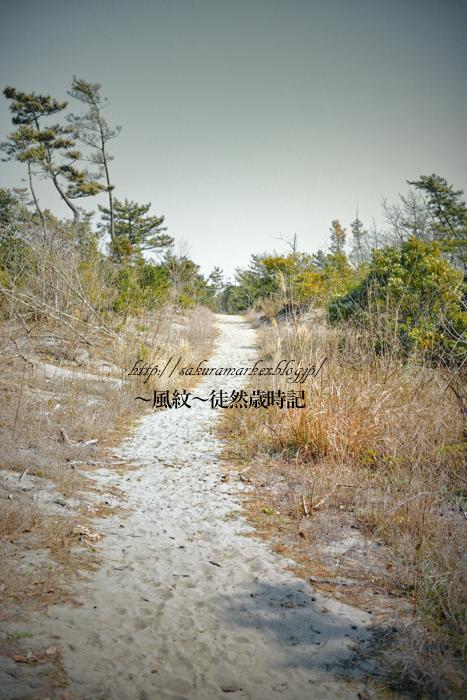 真冬の防風林散歩道。_f0235723_20545232.jpg