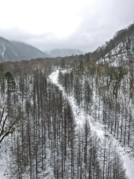 shinhotaka - ropeway_f0315034_16414137.jpg