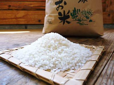 七城米 長尾農園 平成28年度のお米作りがスタートです!まずは満遍なく堆肥をまきます!!_a0254656_17211465.jpg