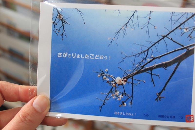 f0238398_16011973.jpg