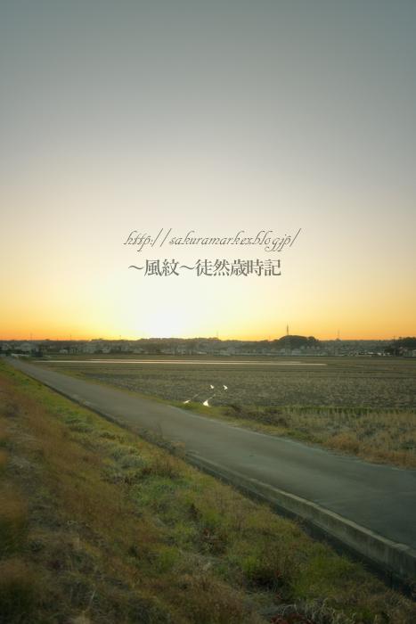 落日の冬田。_f0235723_23162367.jpg