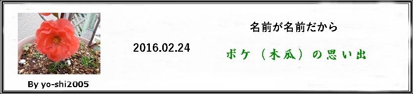 e0033229_195263.jpg