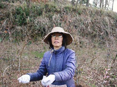 無農薬フレッシュブルーベリー 大量の木片チップを投入して腐木土で育てます_a0254656_1901041.jpg