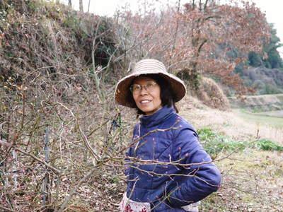 無農薬フレッシュブルーベリー 大量の木片チップを投入して腐木土で育てます_a0254656_19261014.jpg