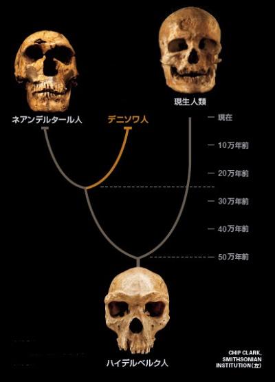 ドイツ人「日本人はネアンデルタールの子孫」:日本人「縄文人こそムー帝国の子孫」!_a0348309_1074754.jpg