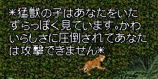 c0325013_00000964.jpg