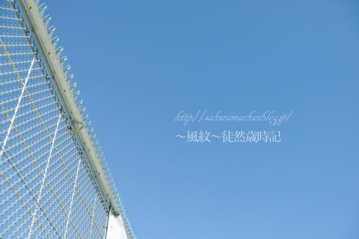 鉄条網のある青空。_f0235723_21563758.jpg