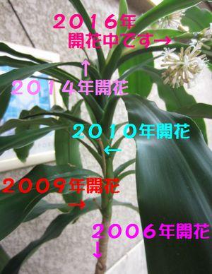 d0204154_1859552.jpg