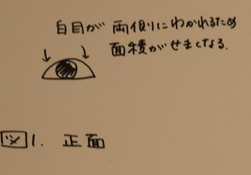 e0201060_20120874.jpg