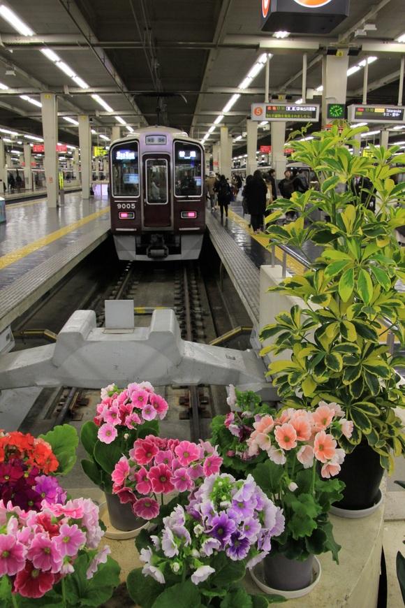 阪急9005F 梅田駅にて_d0202264_6214378.jpg