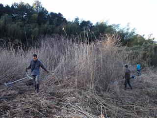 やつだ開拓団 第二期団員募集 -美しい谷津田の風景を復活させよう-_c0177665_18172497.jpg