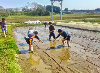 やつだ開拓団 第二期団員募集 -美しい谷津田の風景を復活させよう-_c0177665_18181336.jpg