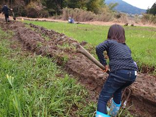 やつだ開拓団 第二期団員募集 -美しい谷津田の風景を復活させよう-_c0177665_1818774.jpg