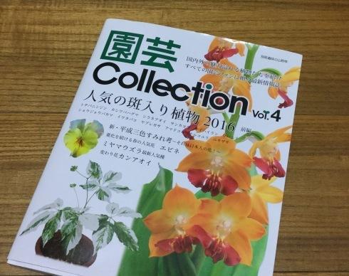 栃の葉書房 「園芸Collection」Vol・4_b0137969_22062943.jpeg